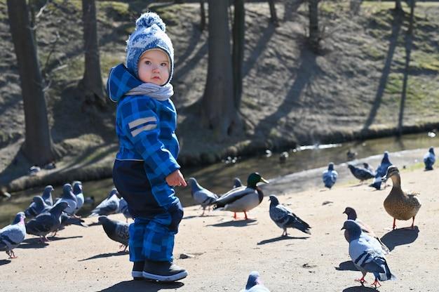 Ребенок играет на улице с голубями.