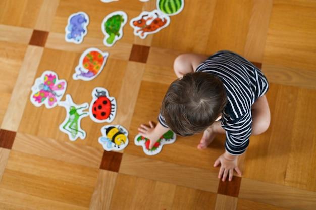 ママと赤ちゃんは昆虫を研究します。母は子供を教えます。上からの眺め。男の子と昆虫。フラットレイ