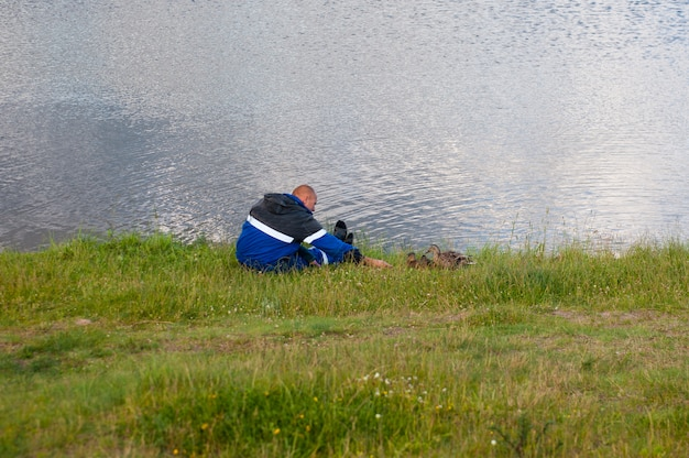 Человек кормления уток в пруду. спасатель кормит уток, голодные утки боятся кормить с рук.
