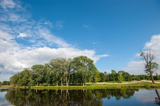 Красивое неподвижное озеро с деревьями на горизонте и белыми тучными облаками в небе. мирный летний день на даче. большие зеленые деревья на озере