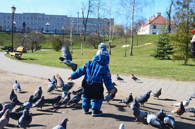 Ребенок играет на улице с голубями