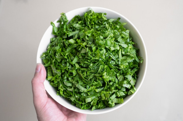 手は緑のプレートを保持しています。菜食主義の概念。