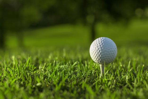 健康と瞑想のためにゴルフをする、