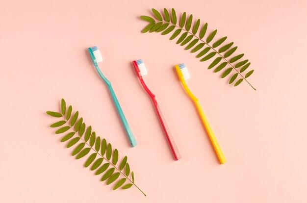 着色された歯ブラシの組成。フラット横たわっていた。