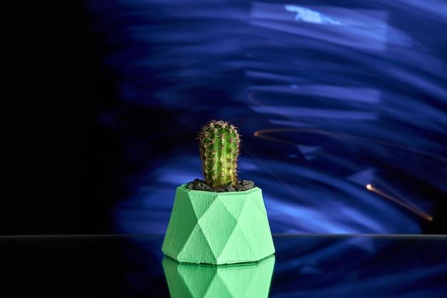 多肉植物、青い光の背景に緑のコンクリートポットのサボテン。きれいな写真