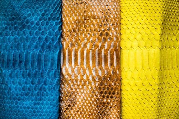 Три различных оттенка модной окрашенной поверхности кожи змеиной питона