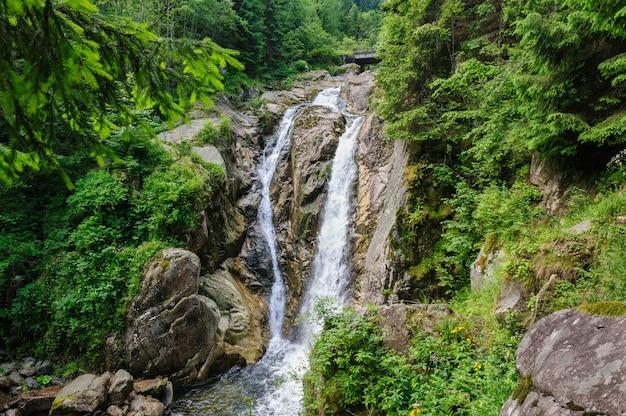 Водопад в глухом лесу в горах