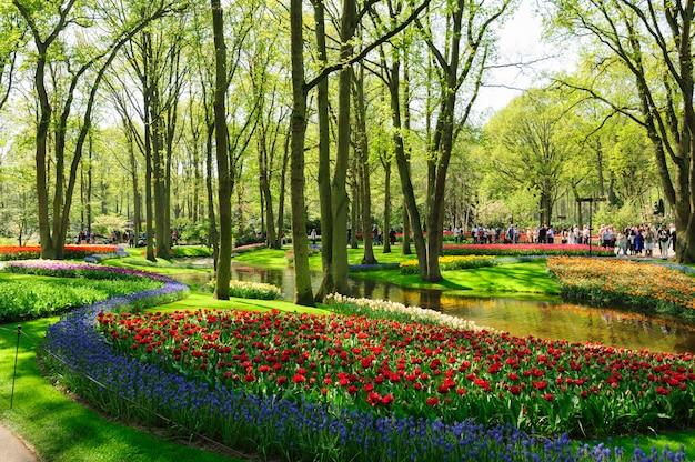 オランダ、リッセのキューケンホフ公園の花壇