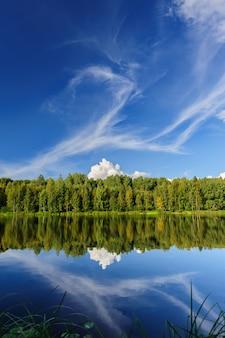 北の川と森