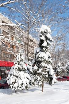 キシナウ、モルドバの冬