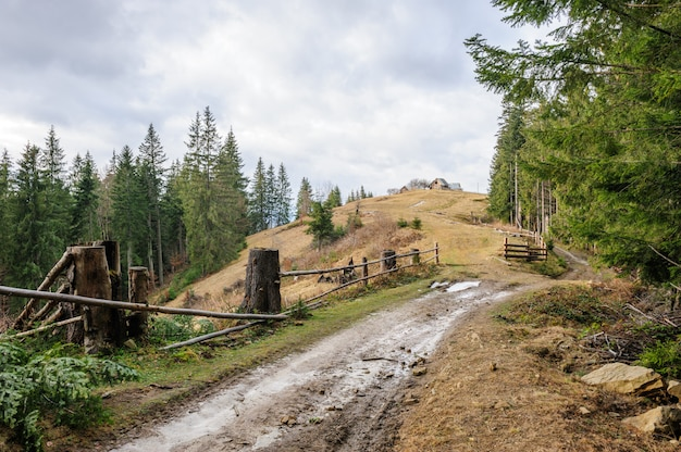 汚れた道路と森の近くの一戸建て