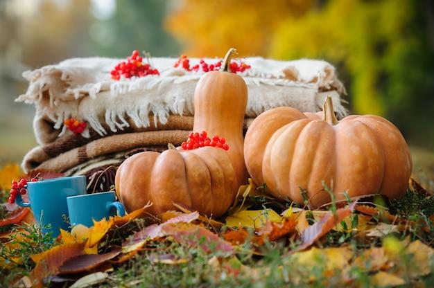 秋の感謝祭の静物