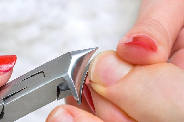 クリッパーで爪を切る