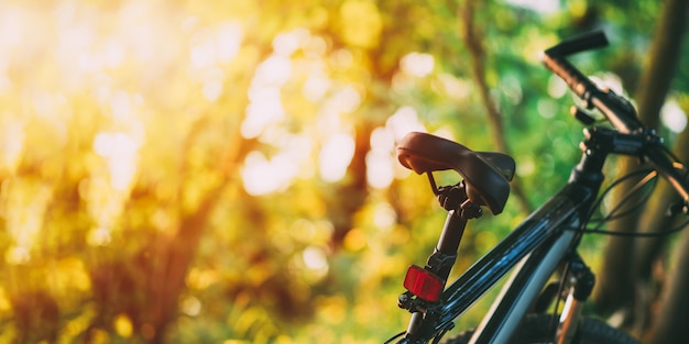 Горный велосипед в лесу на закате.