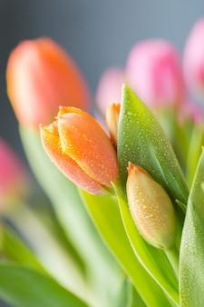 Закройте вверх свежего пука букета розовых розовых оранжевых тюльпанов в вазе. копировать пространство цветочный фон открытка. выборочный фокус. свободное место.