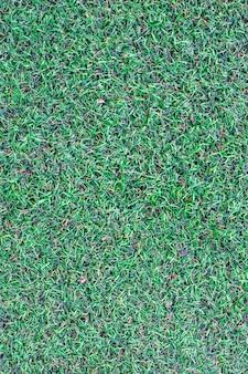 背景の人工芝の表面