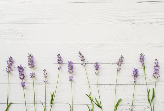 白い木のラベンダーの組成物。新鮮な夏の花の境界線。