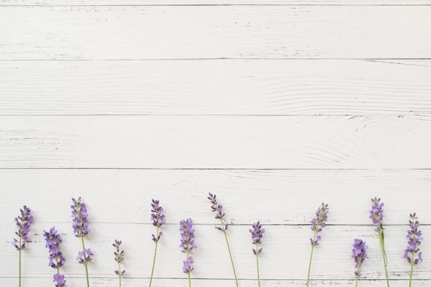 白い木のラベンダーの組成物。すみれ色の新鮮な花の境界線。