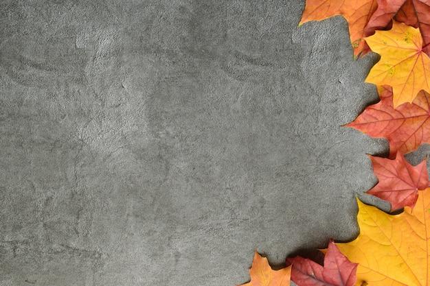 秋の組成物。カエデの葉の秋のフレーム。フラット横たわっていた、トップビュー