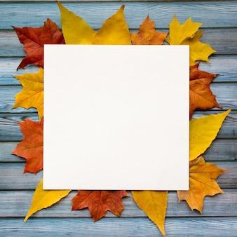 Осенняя композиция из кленовых листьев и квадратной белой бумаги. плоская планировка, вид сверху