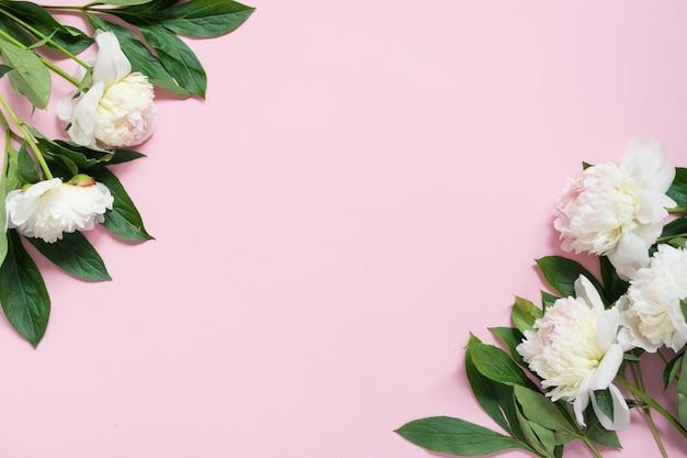 ピンクの背景にピンクの牡丹の花のボーダー。フラット横たわっていた、トップビュー、コピースペース