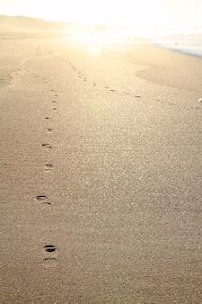 夕暮れ時の砂の足跡