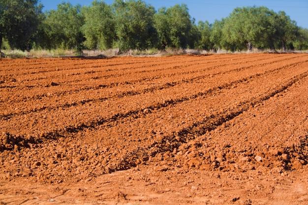 春の茶色の農業分野
