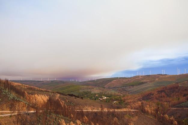 ポルトガルの山で火災