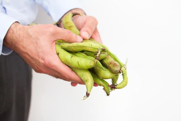 人の手の中の豆