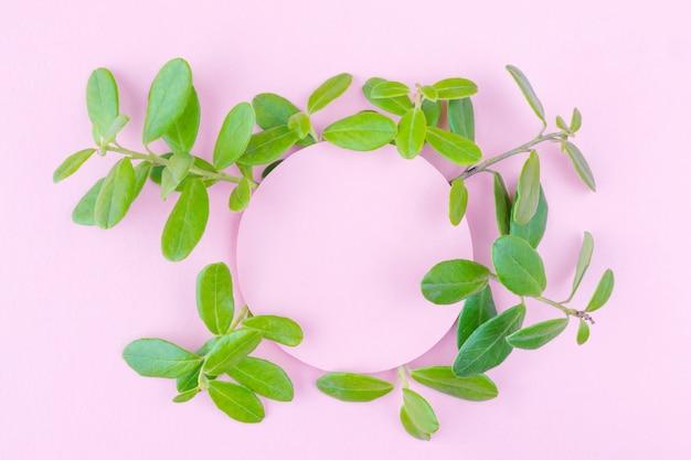 植物とパステルピンクの背景。