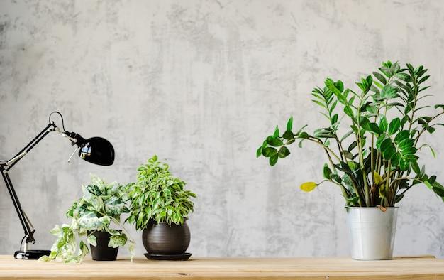 ランプと木の表面の花で作業するための机