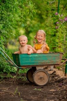 Двое маленьких детей девочка и мальчик на даче в садовой тачке сидят улыбаются