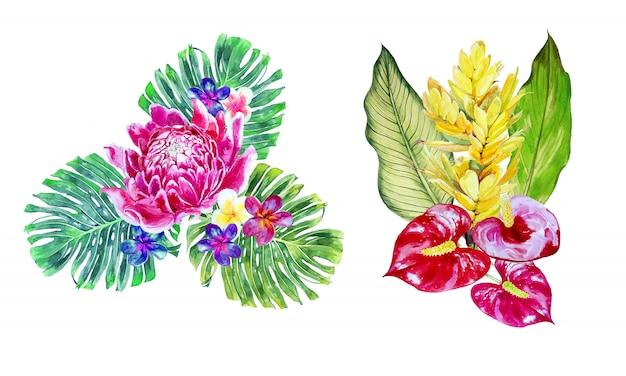水彩の熱帯の花の花束クリップアートセット。エキゾチックな花のイラスト。