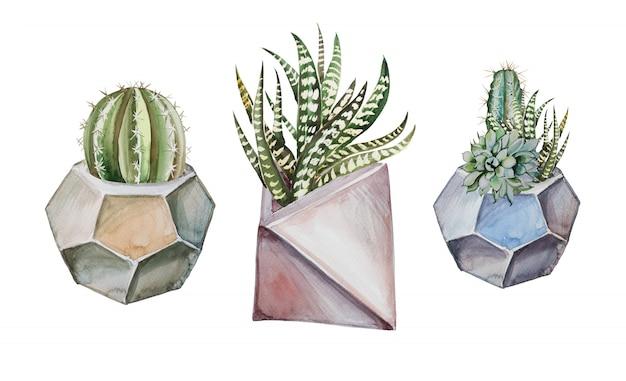 コンクリートポットクリップアートセットの水彩多肉植物。