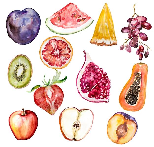 水彩の手描きのフルーツクリップアートセットは、白で隔離。健康食品イラスト