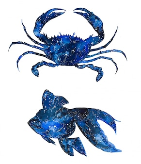 水彩銀河の海の動物。手塗りのカニと魚。