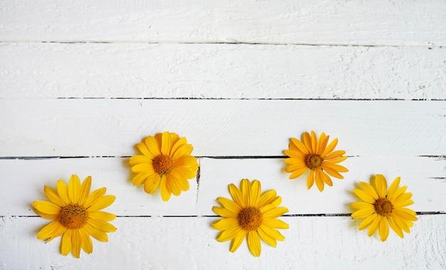 白い木の黄色い花のコンポジション。コピースペース