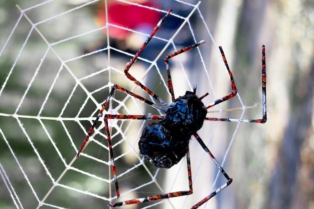 ハロウィーンパーティーのシンボルとしてクモの巣とハロウィーンの背景