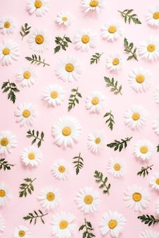 Узор из ромашки, лепестков, листьев на розовом