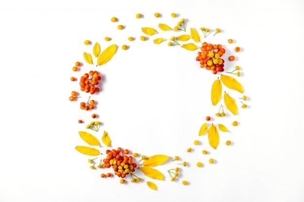 秋の組成物。葉と白い背景のナナカマドの花輪。