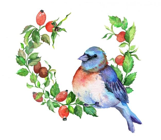 ブライヤー枝に青い鳥。水彩イラスト。