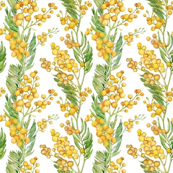 Бесшовный весенний образец с веточкой мимозы. акварель желтый цветочный