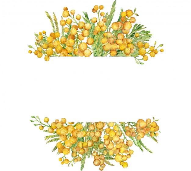 水彩のミモザフレーム。黄色い春の花のフレーム。手描きイラスト。