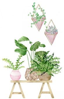 鉢植えの植物が付いている家の装飾の水彩イラスト