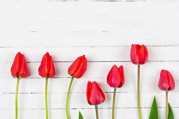 コピースペースを持つ白い木製の背景に赤いチューリップの花