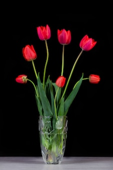 黒い背景にガラスの花瓶に赤いチューリップの花束をクローズアップ