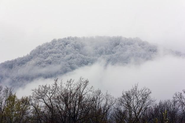 Холм в снегу