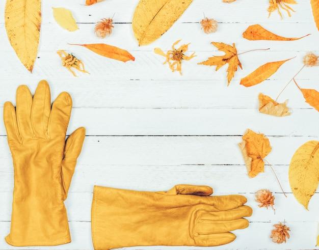 秋の組成物。秋の乾燥した黄色の葉と白い木の女性の手袋で作られたフレーム