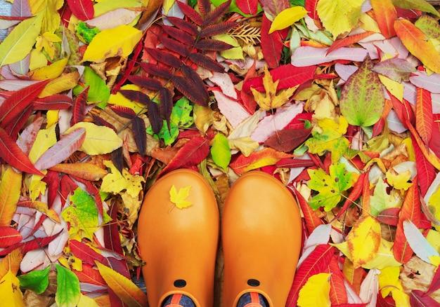オレンジ色のゴム長靴のペアは紅葉を着色