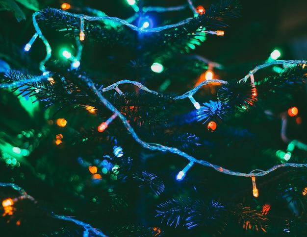 新年の木に色とりどりのクリスマスライト